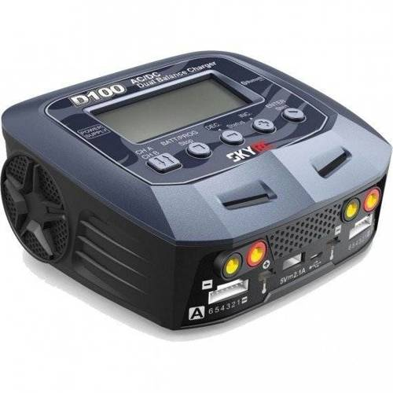 Ładowarka SkyRC D100 V2